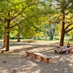 Castlemaine_playspace-2