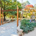Castlemaine_playspace-4